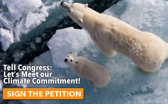 climate-petition